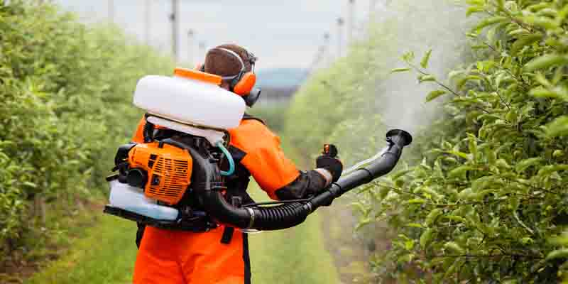 Best tank sprayer
