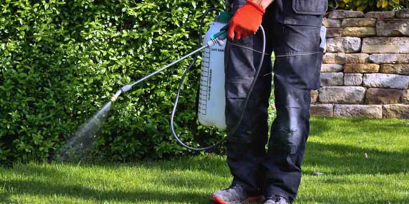 Best Pump Sprayer Buyer's Guide